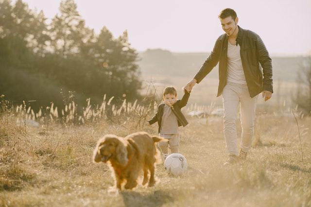 jaki pies dla dziecka